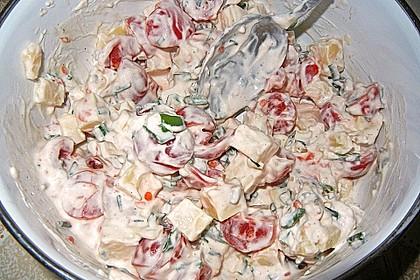 Dänischer Käse - Tomaten - Salat 3