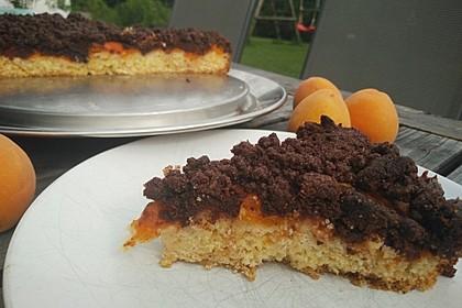 Marillenkuchen mit Schokostreuseln