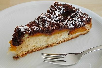 Marillenkuchen mit Schokostreuseln 1