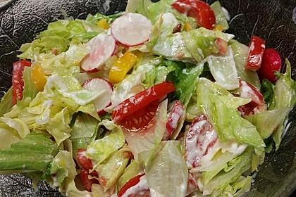 Bunter Salat mit Joghurtdressing (Bild)