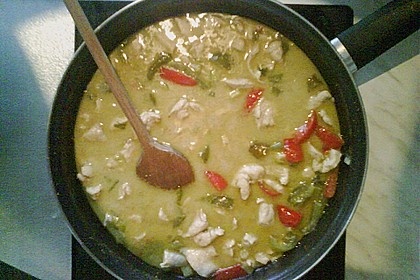 Jens' grünes Curry 3