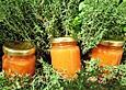 Weltbeste Pfirsichmarmelade (Nachtischmarmelade)