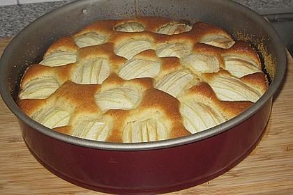 Megaleckerer Apfelkuchen nach Tante Uschi 20