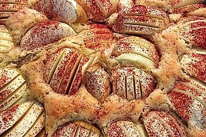 Megaleckerer Apfelkuchen nach Tante Uschi 49