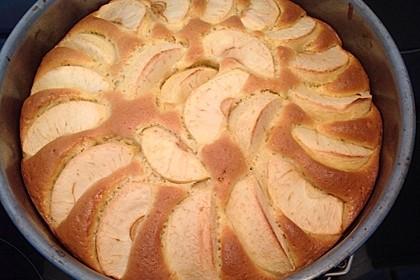 Megaleckerer Apfelkuchen nach Tante Uschi 26