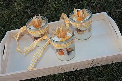 Orangen - Lebkuchen - Trifle 2
