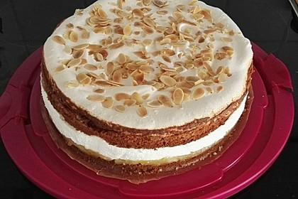 Apfel - Schneemus - Torte 8