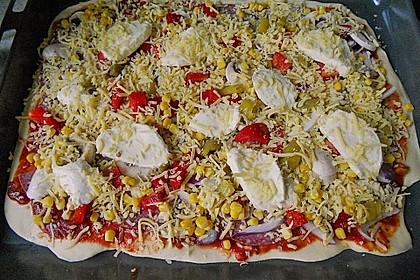 Pizzaboden - dünn und knusprig 92