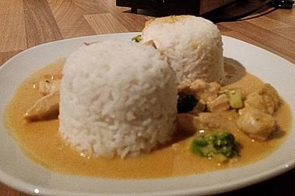 Thai Curry Erdnuss - Kokos - Hühnchen 71