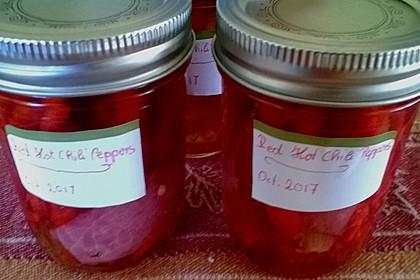 Eingelegte Chilischoten oder Peperoni