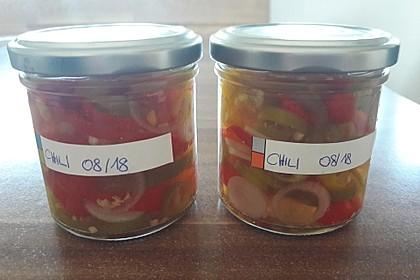 Eingelegte Chilischoten oder Peperoni 4