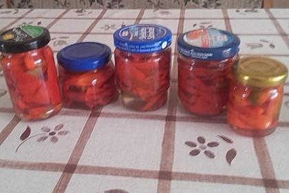 Eingelegte Chilischoten oder Peperoni 3