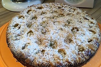Stachelbeer - Streuselkuchen mit Quark 6