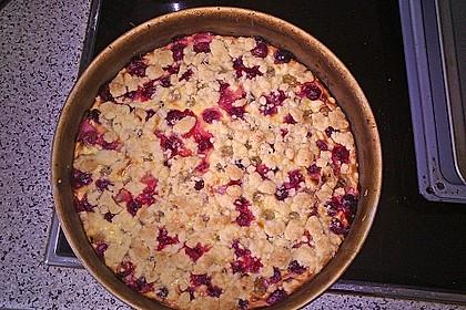 Stachelbeer - Streuselkuchen mit Quark 7