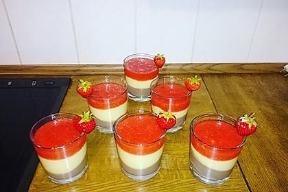 Erdbeer - Schoko - Vanille - Dessert 15