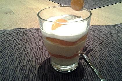 Feine Orangen-Mousse 42