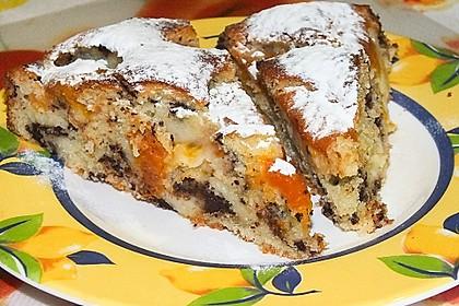 Ameisen-Marillenkuchen mit Puddingfüllung 22