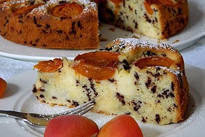 Ameisen-Marillenkuchen mit Puddingfüllung 2