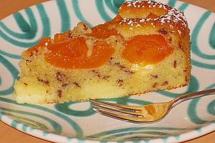 Ameisen-Marillenkuchen mit Puddingfüllung 5