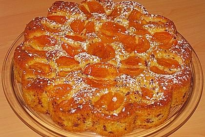 Ameisen-Marillenkuchen mit Puddingfüllung 54