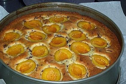 Ameisen-Marillenkuchen mit Puddingfüllung 62