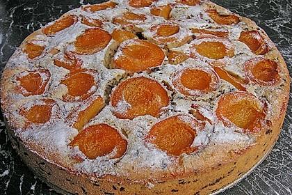 Ameisen-Marillenkuchen mit Puddingfüllung 21
