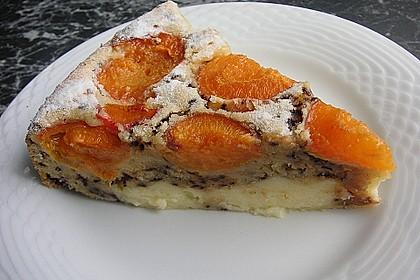 Ameisen-Marillenkuchen mit Puddingfüllung 8