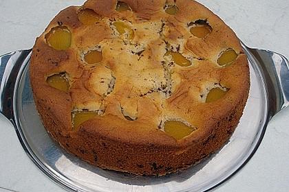 Ameisen-Marillenkuchen mit Puddingfüllung 56
