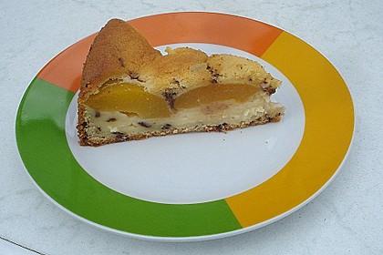 Ameisen-Marillenkuchen mit Puddingfüllung 57