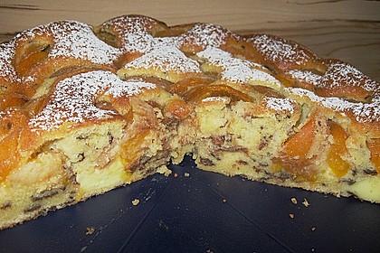 Ameisen-Marillenkuchen mit Puddingfüllung 50