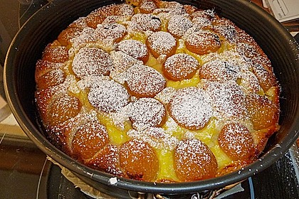 Ameisen-Marillenkuchen mit Puddingfüllung 33