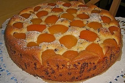 Ameisen-Marillenkuchen mit Puddingfüllung 12