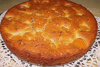 Ameisen-Marillenkuchen mit Puddingfüllung 30