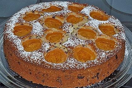 Ameisen-Marillenkuchen mit Puddingfüllung 28