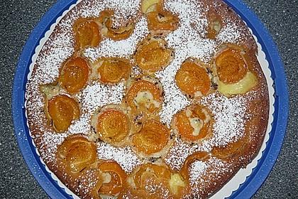 Ameisen-Marillenkuchen mit Puddingfüllung 48