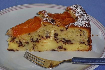 Ameisen-Marillenkuchen mit Puddingfüllung 26
