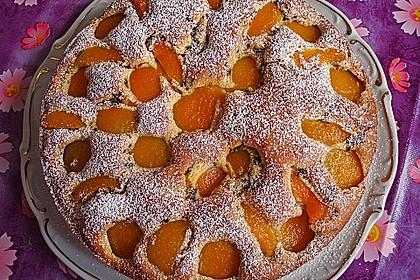 Ameisen-Marillenkuchen mit Puddingfüllung 7