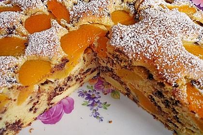 Ameisen-Marillenkuchen mit Puddingfüllung 4