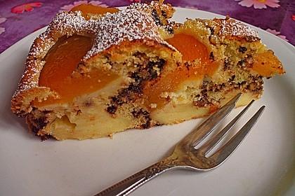 Ameisen-Marillenkuchen mit Puddingfüllung 3