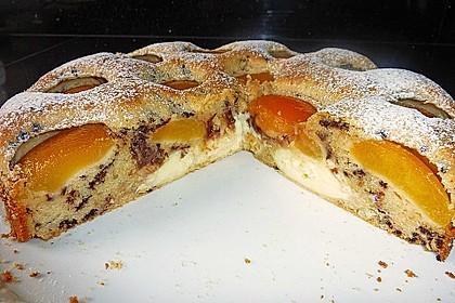 Ameisen-Marillenkuchen mit Puddingfüllung 6