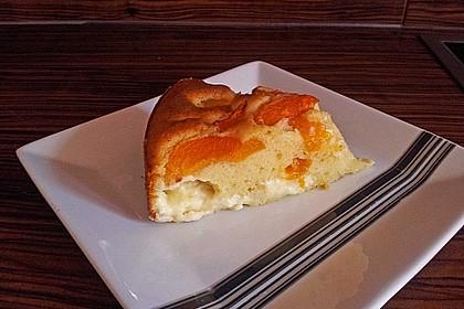 Ameisen-Marillenkuchen mit Puddingfüllung 41