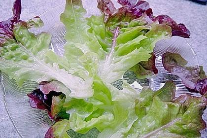 Blattsalat mit Mango und Schafskäse 57