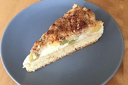 Rhabarberkuchen mit Vanillecreme und Streusel 47