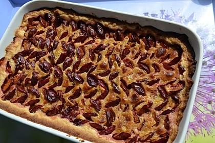 Pflaumenkuchen mit Eierguss (Custard) (Bild)