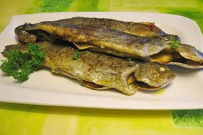 Gebackener  Fisch 4