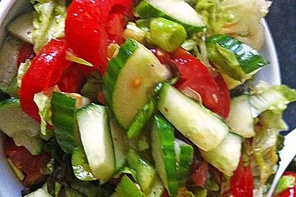 Coban Salatasi 12