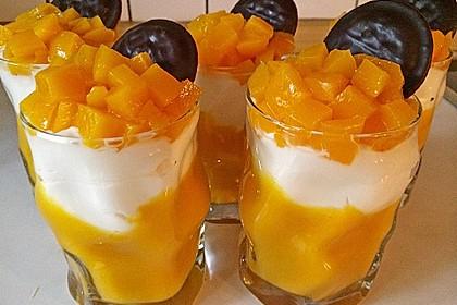 Aprikosenpüree mit Topfenhaube 3