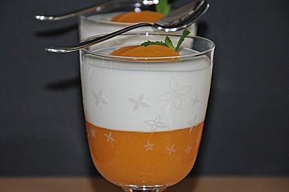 Aprikosenpüree mit Topfenhaube