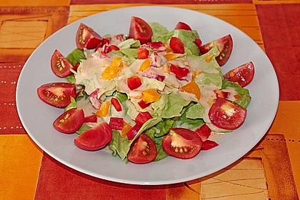 Andis Salatsoße 3
