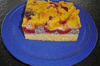 Zwetschgenkuchen mit Mohnquark + Butterstreuseln 17